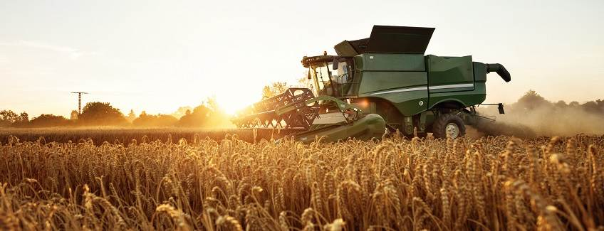 Combine in a wheat field with the sun going down behind it.